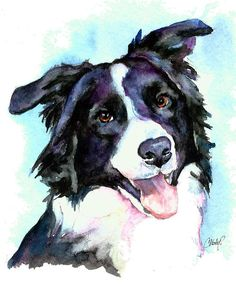 Petey Border Collie by Christy  Freeman - Petey Border Collie Painting - Petey Border Collie Fine Art Prints and Posters for Sale