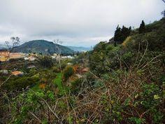 CANARIAS  FOTOS   Canary Islands Photos: Paisajes.....Cumbres de Gran Canaria