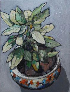 De plant