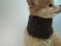Dog scarf hand crocheted black cowl neck by BlackRavenCreations, $10.00