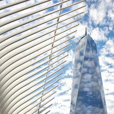 oculus WTC new york santiago calatrava designboom