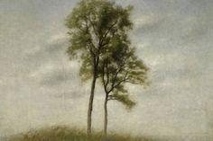 Vilhelm Hammershøi, Unge Egetræer/Jeunes chênes/Young oaks, 1907