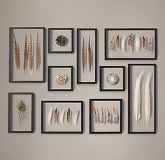 Framed Feather Collection Restoration Hardware - prices vary
