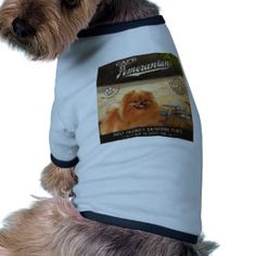 Cafe Pomeranian Dog Shirt