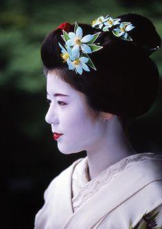 Retired maiko Misuzu of Gion Higashi wearing climatis kanzashi for June (rainy season)
