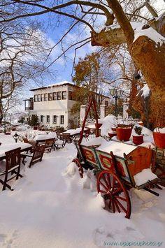 Portaria, Mount Pelion Snow in Greece Myconos, Thessaloniki, Winter Scenes, Greece Travel, Greek Islands, Beautiful Places, National Parks, Scenery, Around The Worlds