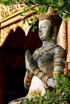 #buddhistart #buddha