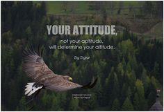 Your attitude, not your aptitude, will determine your altitude. Motivational Quotes For Success, Inspirational Quotes, Zig Ziglar, Monday Motivation, Quotes Motivation, Love Photos, The Other Side, Attitude Quotes, Be Yourself Quotes