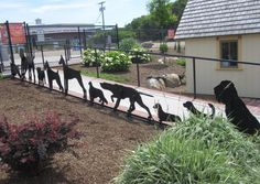 10 Amazing Dog Parks You Need to See in Your Lifetime | Dogster