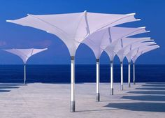 Cool parasol for commercial