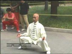 Tai Chi basic stances video
