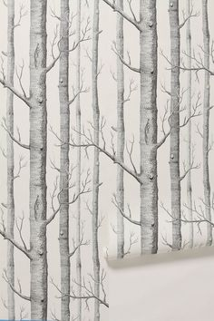 I always knew I wanted to do an accent wall of wallpaper in the nursery, on the small wall with the door. I wanted to find a cool wallpaper. B&w Wallpaper, Nursery Wallpaper, Pattern Wallpaper, Forest Wallpaper, White Wallpaper, Cloakroom Wallpaper, Nature Wallpaper, Amazing Wallpaper, Tree Wallpaper In Bathroom