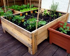 How To Build Planter Boxes For Garden Container Gardening Diy Planter Box From Pallets Foxy Folksy Elevated Planter Box, Pallet Planter Box, Wooden Planter Boxes, Raised Planter, Wooden Garden Boxes, Garden Types, Diy Garden, Planter Garden, Garden Ideas