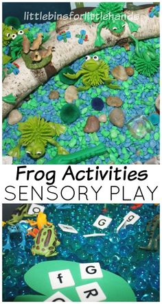 Frog Pond Sensory Play Activities Nature Exploration Discovery Science