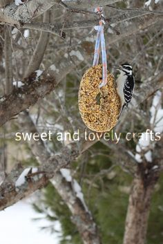 Birdseed cakes - Materials:  3 cups birdseed, 2 envelopes unflavored gelatin (1/2 oz.), bundt cake pan or 4 to 5 wide-mouth mason jar rings to form cakes, heavy twine or rip strips off an old shirt for ribbon, wax paper, 1 large cookie sheet and non-stick cooking spray.