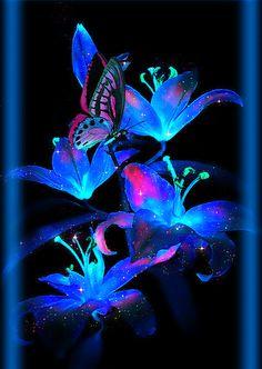 Mimi Gif: Sweet Spring Butterfly Pictures, Flower Images, Flower Art, Purple Flowers Wallpaper, Butterfly Wallpaper, Fairy Wallpaper, Flower Wallpaper, Beautiful Butterflies, Amazing Flowers