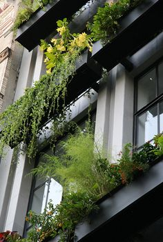Best green building may be a expanding project that would allow you to uphold the majority of the natural habitat around. Green Architecture, Sustainable Architecture, Residential Architecture, Sustainable Design, Concept Architecture, Landscape Architecture, Landscape Design, Garden Design, Pavilion Architecture
