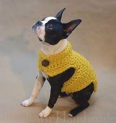 French Bulldog Sweater Crochet Pattern Free Crochet Patterns