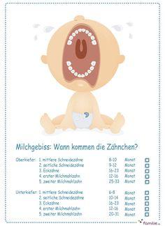 Zwei lange Jahre arbeitet Ihr Baby an seinem Milchgebiss. Hier siehst du, welche Zähne zuerst durchbrechen. #checkliste #zahnen