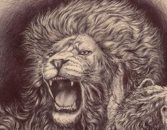 "Check out new work on my @Behance portfolio: ""León Drawing"" http://be.net/gallery/47064623/LeonDrawing"