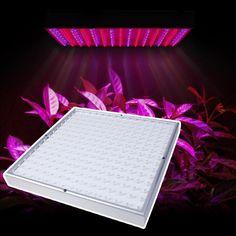 LED-kasvivalaisin