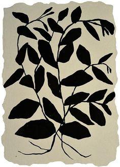 """Climbing Vine,"" ink painting on handmade paper by Kate Roebuck Matisse, Climbing Vines, Plant Illustration, Flower Illustrations, Black White Art, Ink Painting, Art Plastique, Botanical Art, New Art"