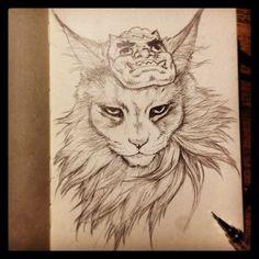 Instagram cats