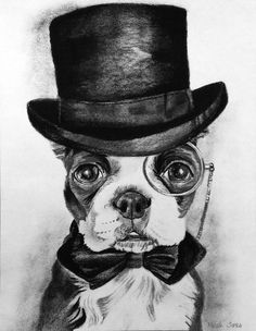 A Wise Boston Terrier by meekahg.deviantart.com on @deviantART