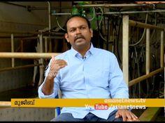 Pravasi Malayali Mujeeb's Success story of cattle farming