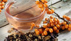 Bylinkový speciál: Rakytník řešetlákový - Vitalia.cz Cantaloupe, Health Fitness, Homemade, Fruit, Vegetables, Food, Earth, Autumn, Awesome