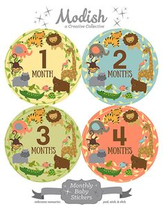 FREE GIFT, Monthly Baby Stickers, Jungle Animals, Gender Neutral Month Stickers, Monthly Onesie Stickers, Elephant, Giraffe, Lion, Tiger
