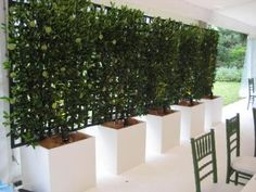 Fruit Trees An edible wall of fruit trees in planters makes for a gorgeous privacy screen. Plus, how convenient is this for when you're in need of a little snack?