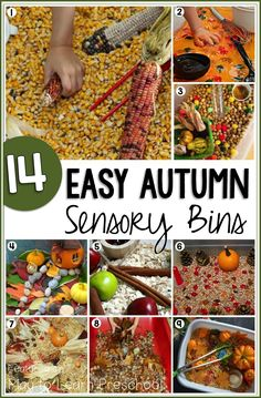 Water table from the summer to a sensory table! These 14 Easy Autumn Sensory Bins bring all the wonderful smells, sight, textures and sounds of the season inside Fall Sensory Bin, Sensory Tubs, Sensory Boxes, Sensory Activities, Sensory Play, Preschool Activities, Sensory Garden, Preschool Curriculum, Homeschooling