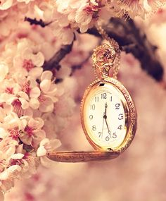 Pink Tree With Watch