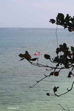 Fancy renting a canoe?