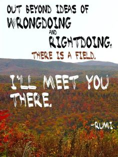 Out beyond ideas of wrong-doing and right-doing there is a field... I'll meet you there. - Rumi :)...