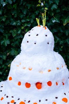 Taart decoreren met wortels- Voeder taart voor vogels- http://www.mylucie.com- bird- snow