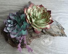 Hallo Allemaal     In de voorjaar catalogus staat de stempelset Oh So Succulent met de bijpassende Succulent Framelits. Met deze set kun je...
