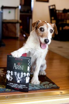 Showing his support. #Uggie #TheArtist
