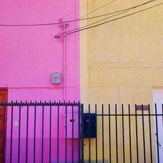 Creo estas vecinas hicieron algo en conjunto...acordaron los colores y tamaños de sus rejas para lograr armonía....lindo!