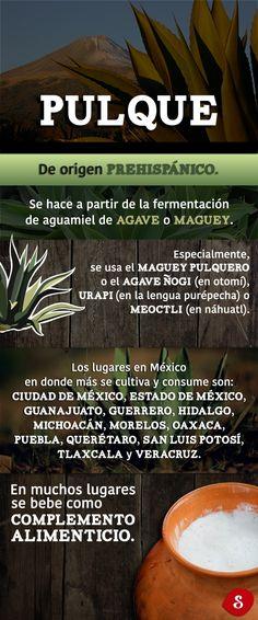 Porque tenemos una gran responsabilidad con la gastronomía tradicional de nuestro país, de las regiones donde habitamos, es por eso que queremos dar un pequeño realce a las pulcatas de Puebla.