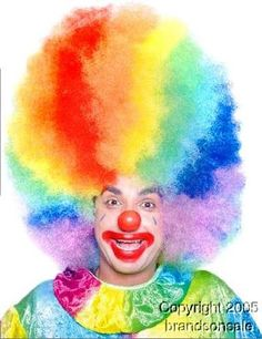 Adult Colorful Clown Afro Costume Wig.