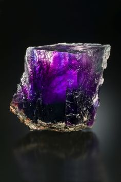 themineralogist:  Halite - back-lit by halogen light to show the purple color tones (13.7 cm)