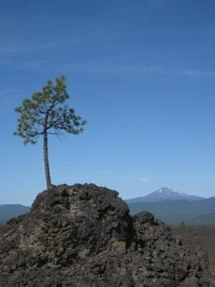 Lava Lands - Drive or hike through these lands to get a great view of volcanic activity. Be sure to check out the wonderful visitor center or go on a nature hike! #bend #educationalactivities