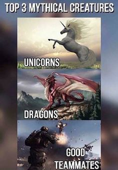 """Video game logic 658088564282359317 - Online Video Games: """"And here we have the elusive 'good teammate' and if you blink-Crikey! They're gone… Source by JOgorjux Gamer Humor, Funny Gaming Memes, Stupid Funny Memes, Funny Humor, Funny Shit, Video Game Logic, Video Games Funny, Funny Games, Video Game Quotes"""