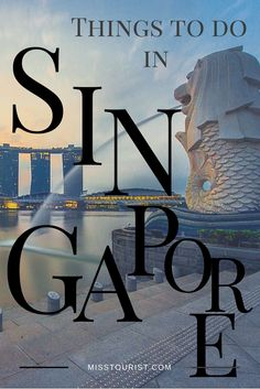 Singapore is without any doubts the most developed, urbanized country in Asia, if not in the world. TOP 9 things to do in Singapore to fully discover this unique country-city: http://misstourist.com/9-things-to-do-in-singapore/