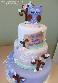 #14 baby owl cake by Desserts by Lori