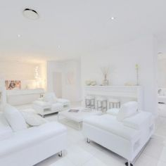 This entire house has been designed in various hues of white, even the family dog is white!