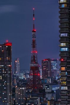 Tokyo Tower Light Down / 東京タワー 消灯 Tokyo Skyline, Japon Tokyo, Tower Light, Japan Architecture, Tokyo Night, Tower Building, Tokyo Tower, Dubai City, City Wallpaper