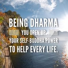 Being Dharma you open up your self-Buddha power to help every life.